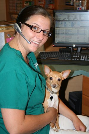 Village Animal Clinic - North Palm Beach, FL - Dog and Cat Veterinary Care Juno Beach, Jupiter, West Palm Beach, Riviera Beach, Singer Island, Lake Park since 1966