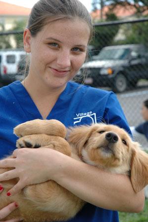 Village Animal Clinic - North Palm Beach, FL - Veterinary Care Juno Beach, Jupiter, West Palm Beach, Riviera Beach, Singer Island, Lake Park since 1966